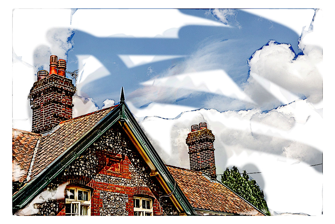 Roofs and Chimneys on Vintage Homes in NELA