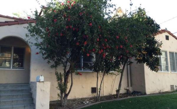 Charming Spanish Duplex