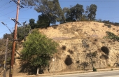 View from Figueroa Street